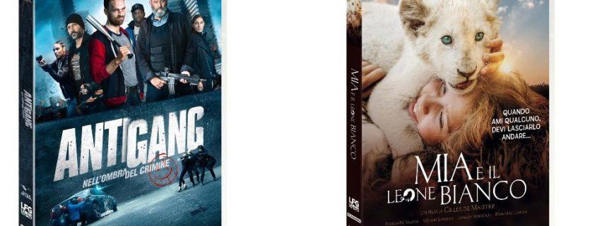 Scopri tutte le novità in arrivo in DVD e Blu-ray Disc di questa settimana!