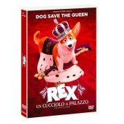 Corri a rivedere Rex – Un Cucciolo A Palazzo da Elettro Star dal 29 Maggio